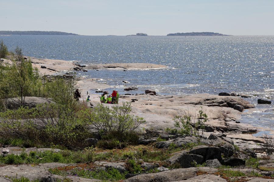 Linkki tapahtumaan Luontoretki: Harakan saaren rantaan ajautuneet aarteet