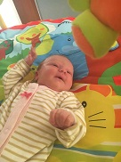 Linkki tapahtumaan Vauvahieronta