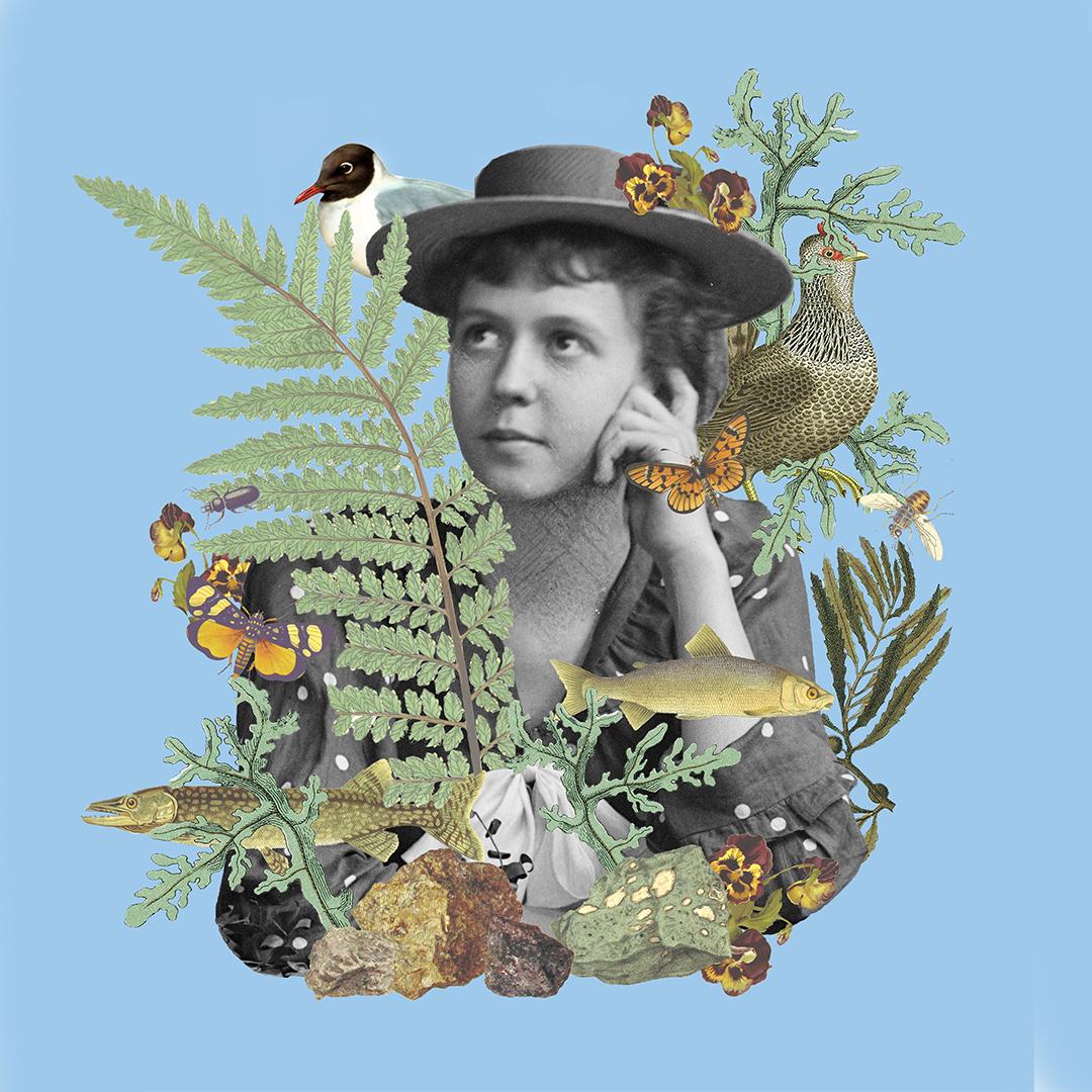 Värikkäästi luonto esittelevä kuva, jossa kala, saniaisen oksa ja perhonen. Mustavalkoisena taustalla nuori haaveilemassa käsi poskella.