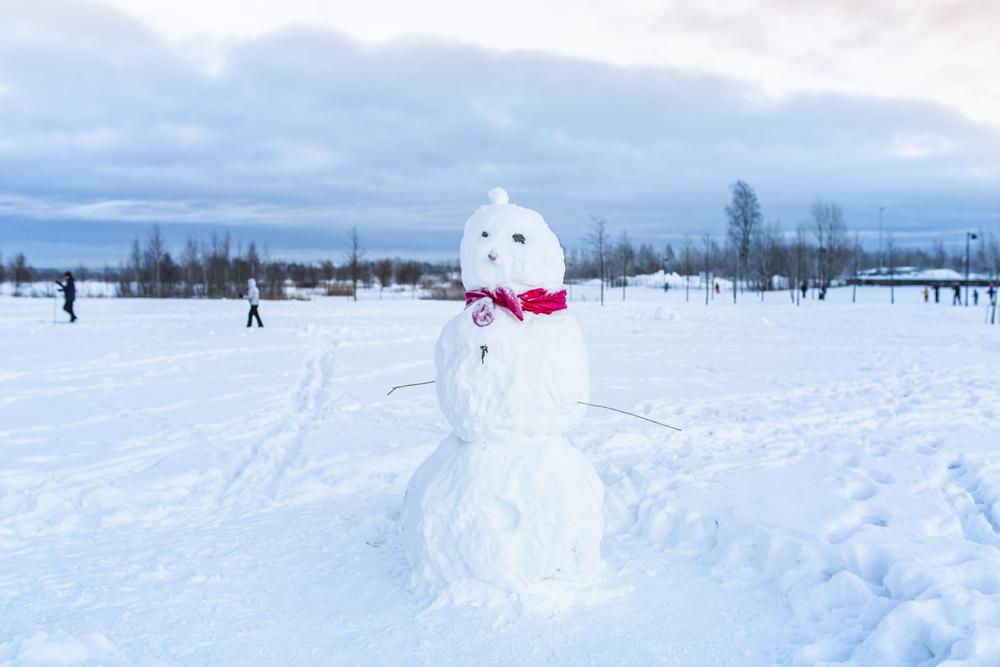 Linkki tapahtumaan Lumiukon rakennusta pakkaslumesta - Talviloma