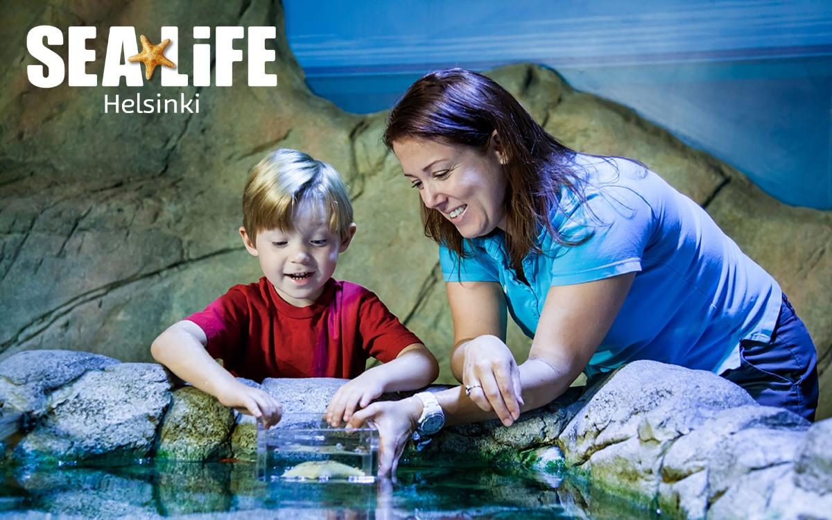 Linkki tapahtumaan SEA LIFEn elämysallaskiertue