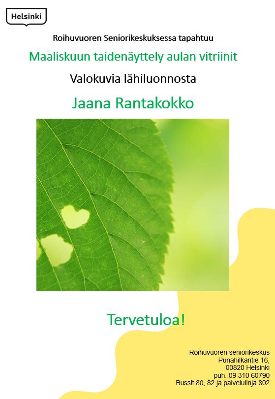 Linkki tapahtumaan Maaliskuun taidenäyttely: Jaana Rantakokko