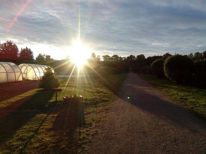 Auringonlasku kumpulan koulukasvitarhalla. Oikealla kuvassa kaksi pientä kasihuonetta. Maisemaa halkoo hiekkatie.