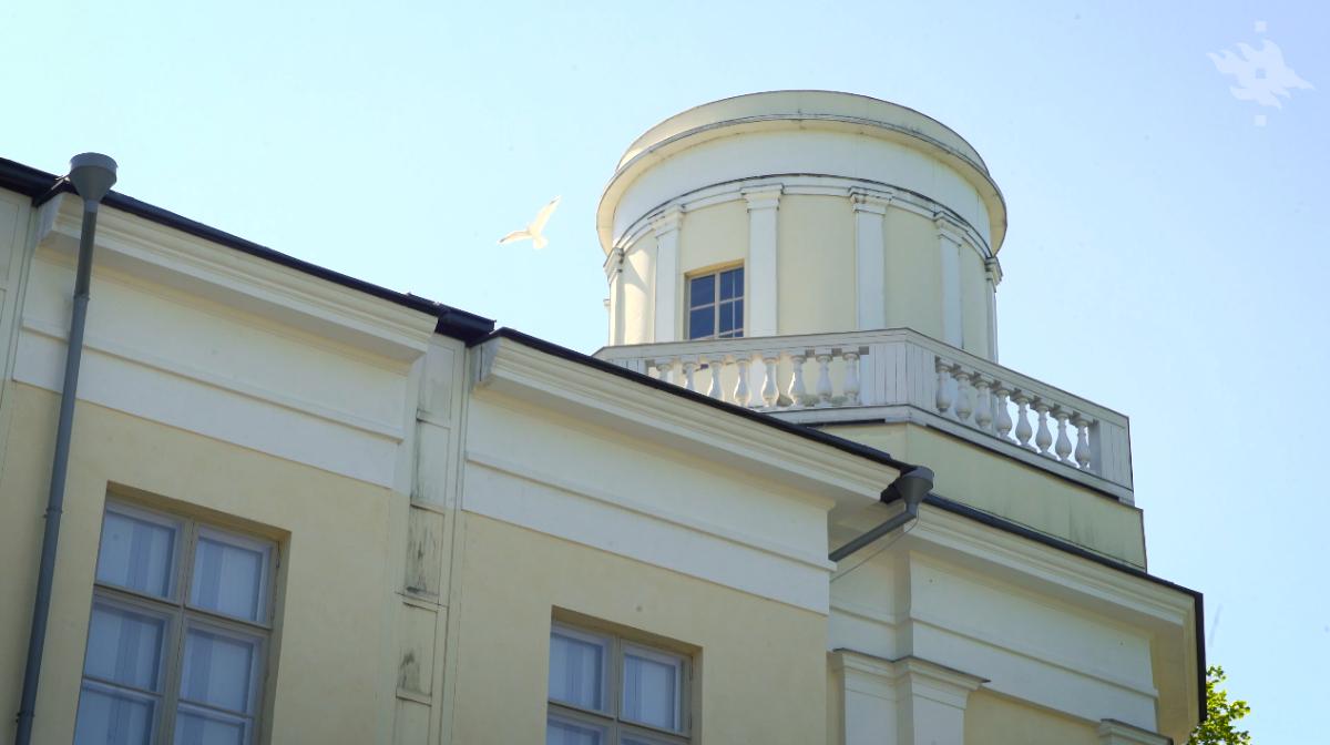 Linkki tapahtumaan Observatorio, Taidehistorialliset kävelykierrokset
