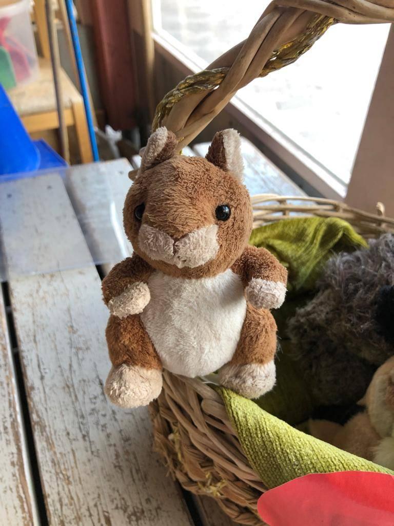 Linkki tapahtumaan Onni-Oravan jumppahetki Leikkipuisto Soihdussa, Paloheinässä