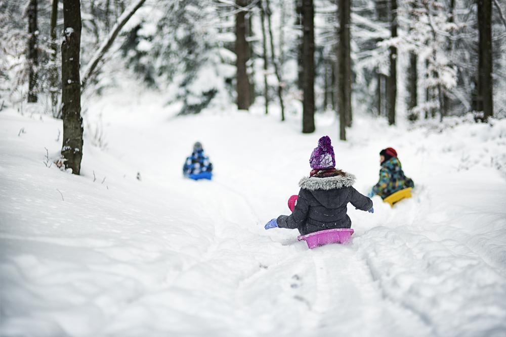 Linkki tapahtumaan Talviloman talviolympialaiset