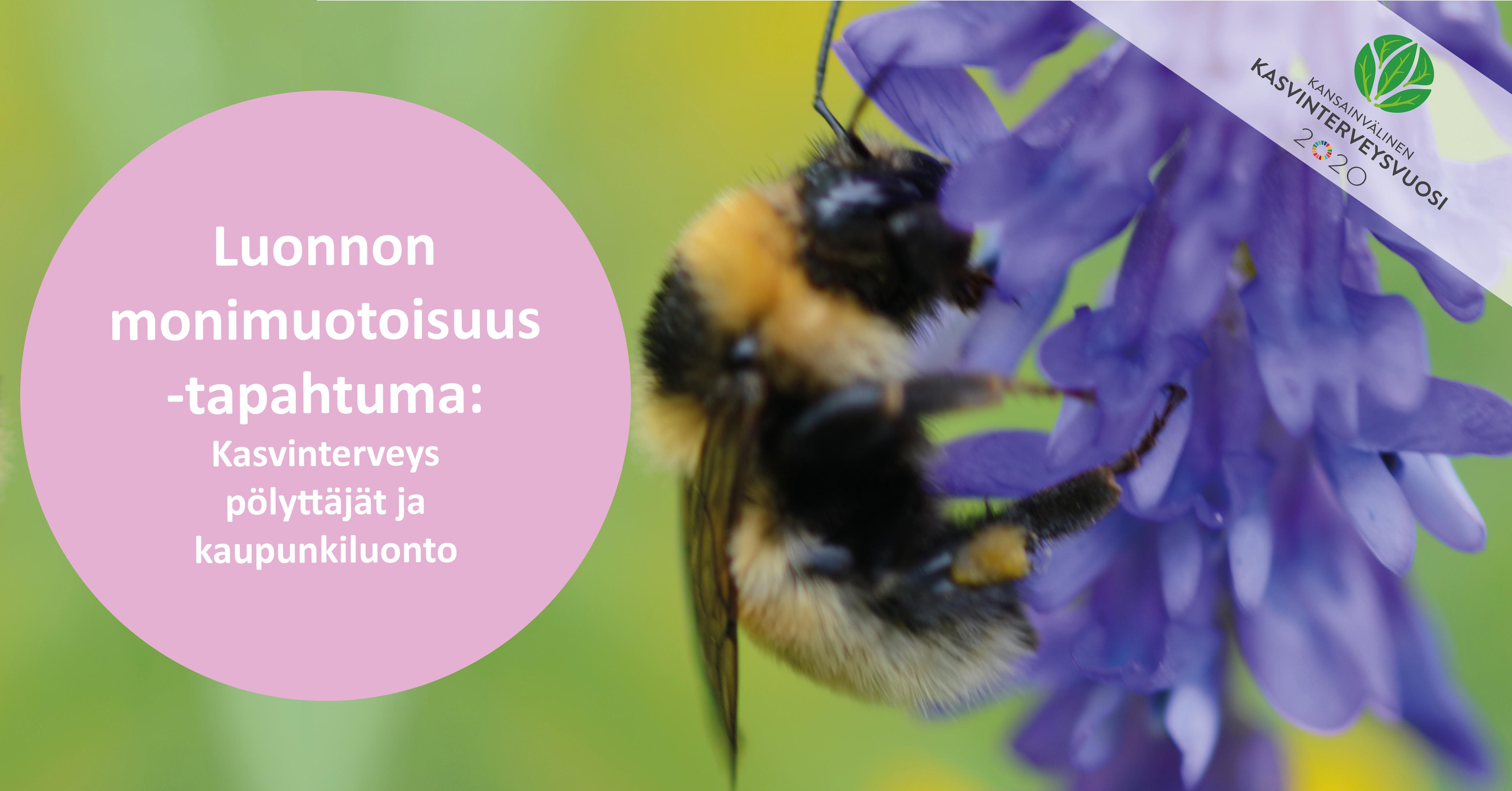 Linkki tapahtumaan Luonnon monimuotoisuus –tapahtuma: kasvinterveys, pölyttäjät ja kaupunkiluonto